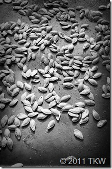 Cajun Spiced Pumpking seeds_110111_0002 BW