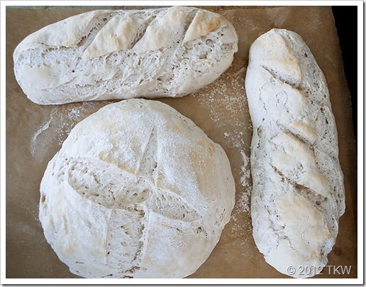 1 Sourdough_032712_0016