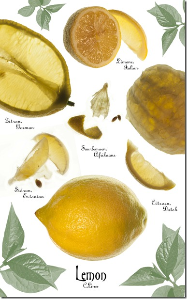 Botanical Lemon