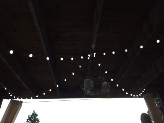 I love, love, love these solar fairy lights. Purchased from Amazon.