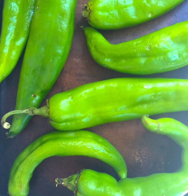 Hatch Chilies©RhondaAdkinsPhotography2015